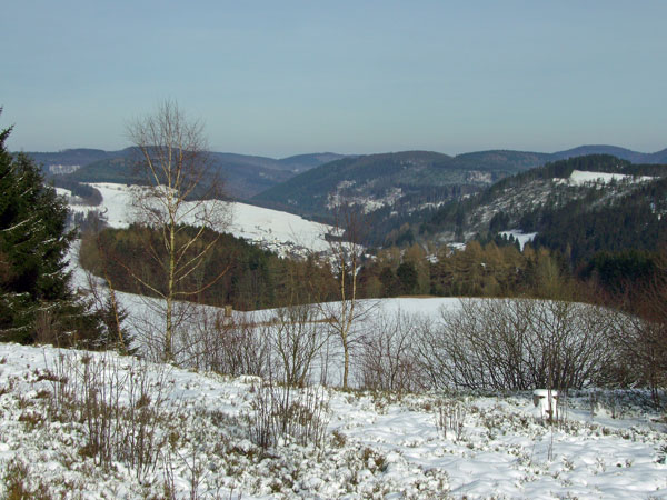 winterswf1_2008