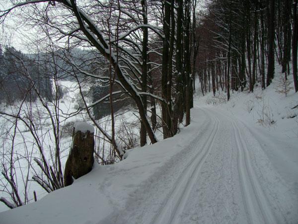 winterswf1_2010
