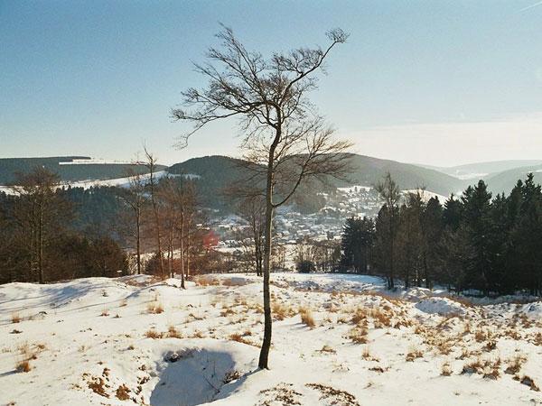 winterswf2_2005