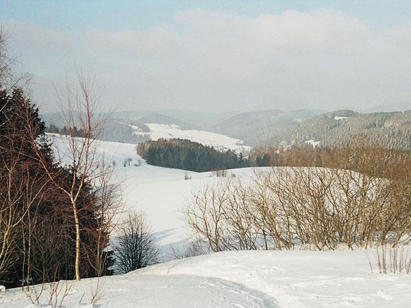 winterswf3_2005