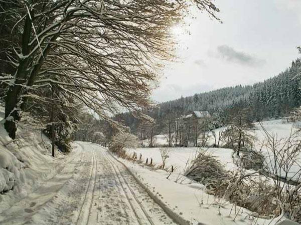 winterswf6_2005