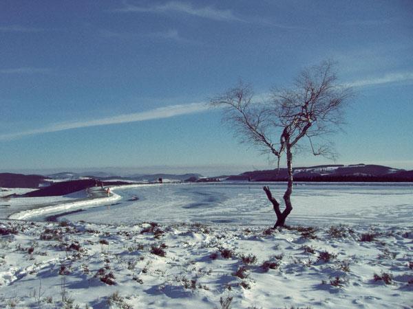 winter12_2009