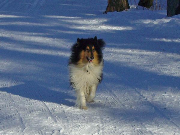 winter16_2009