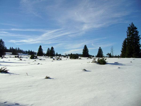winter20_2009