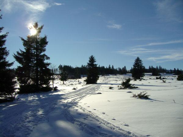 winter21_2009