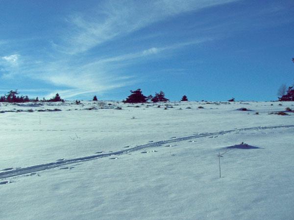 winter24_2009
