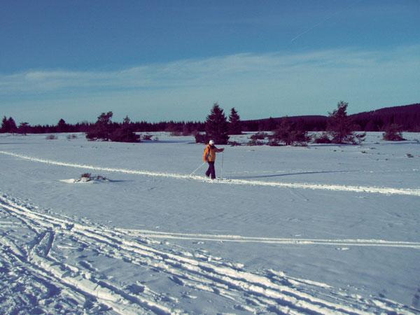 winter26_2009